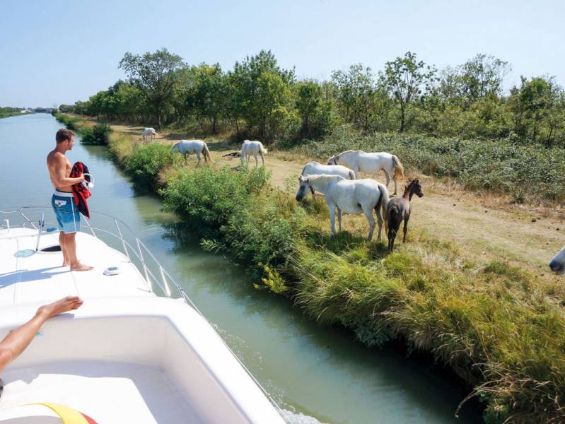 Weekend 2 days : The great outdoors of the Camargue - from 480 euros