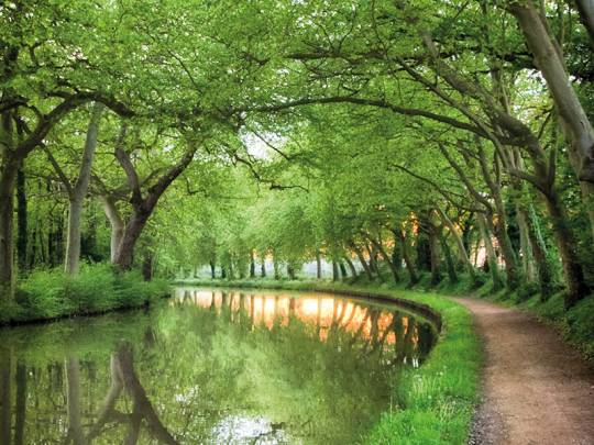 Canal boat hire in Canal du Midi - Boating holiday in France | Nicols